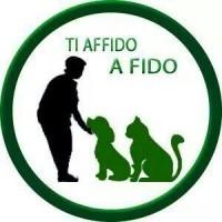 Ti affido a Fido